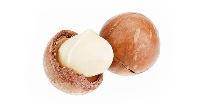 Mayella - Macadamia