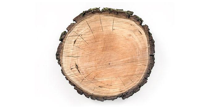 Mayella - Rosewood Pure Essential Oil